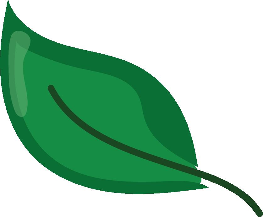 leaf2@300x