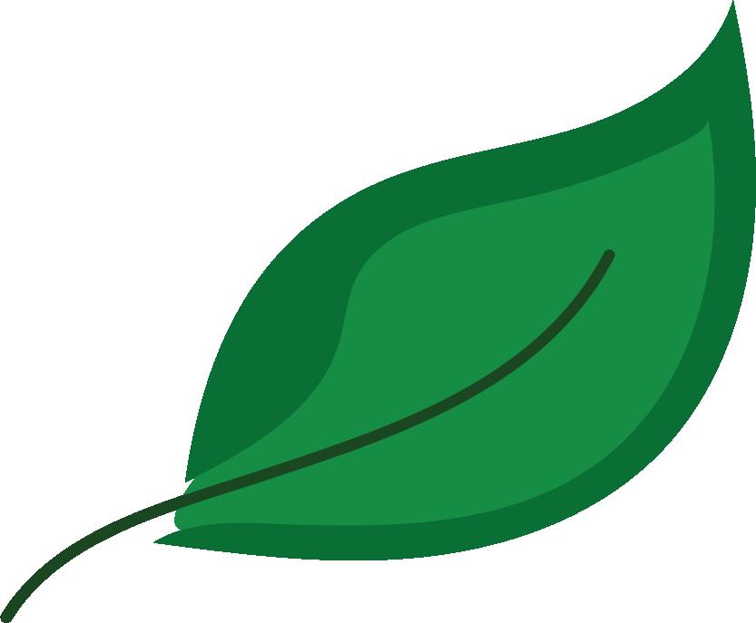 leaf@300x