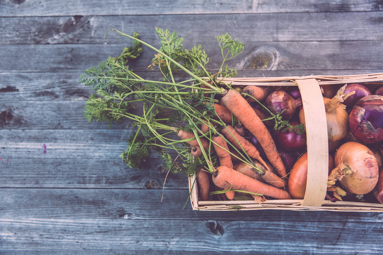 community-garden-education-clean-eating-bonding