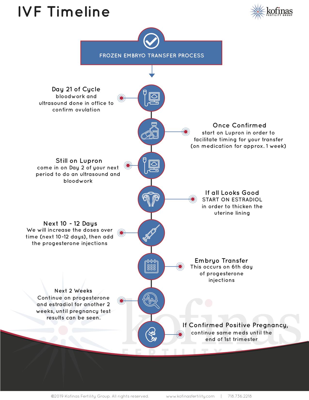 An In Vitro Fertilization Timeline