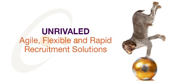 unrivaled solutions. agile, flexible and rapid recruitment solutions
