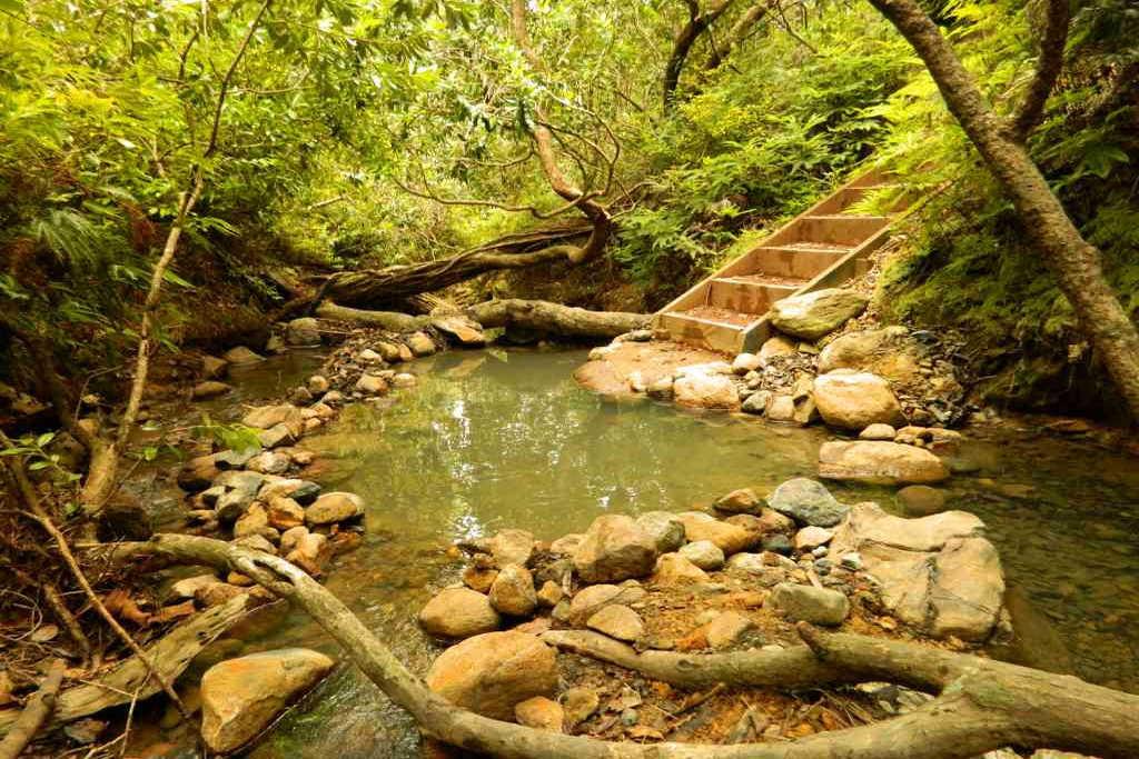 New Zealand hot springs
