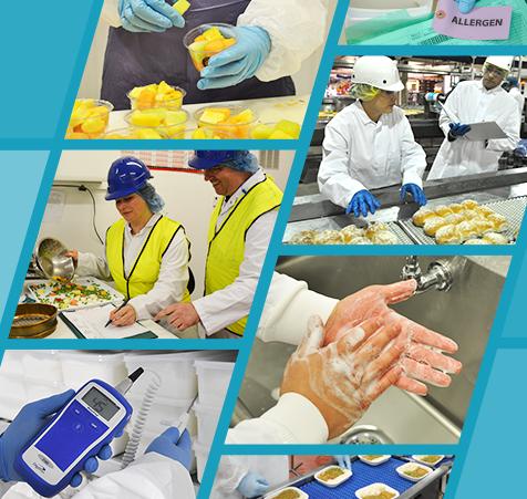 Website_GFSI-Food-Safety-Culture-Webinar-476x451_v1
