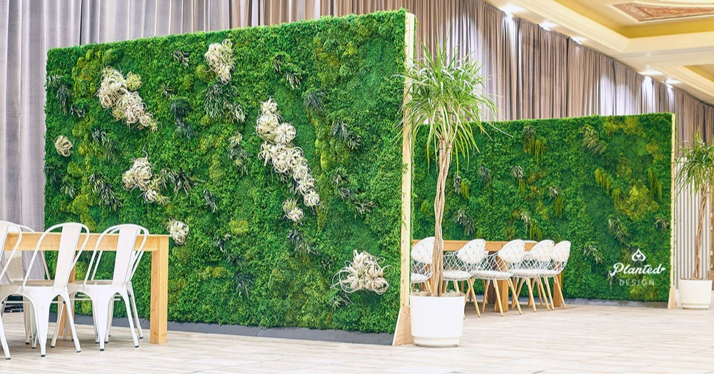 large moss wall events