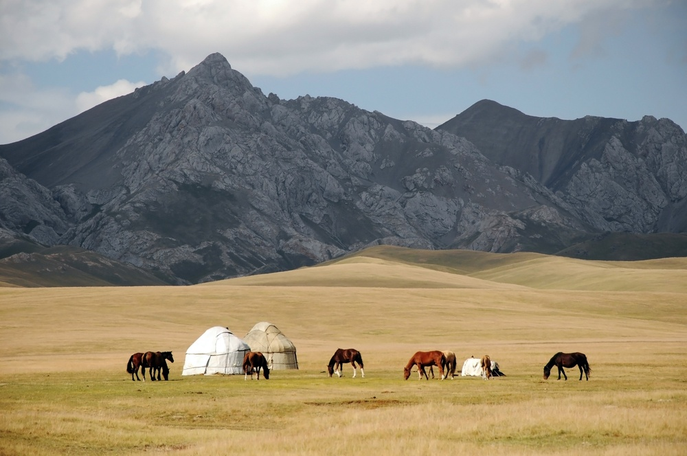 horses around a yurt by the mountains in kyrgyzstan