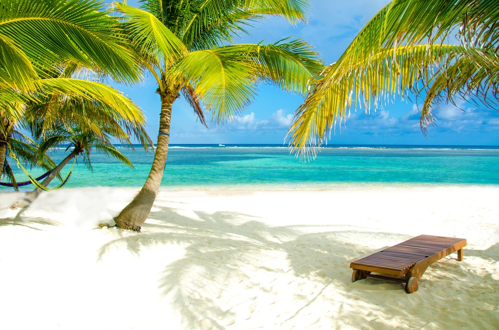 pristine beach in Belize with palm trees swaying