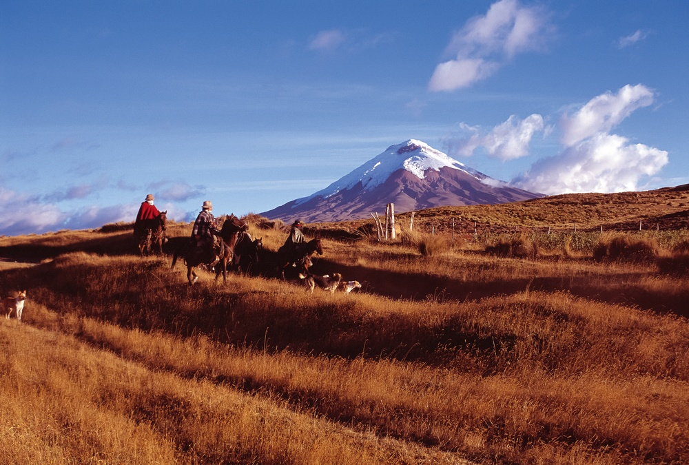 horseriders in cotopaxi national park in ecuador