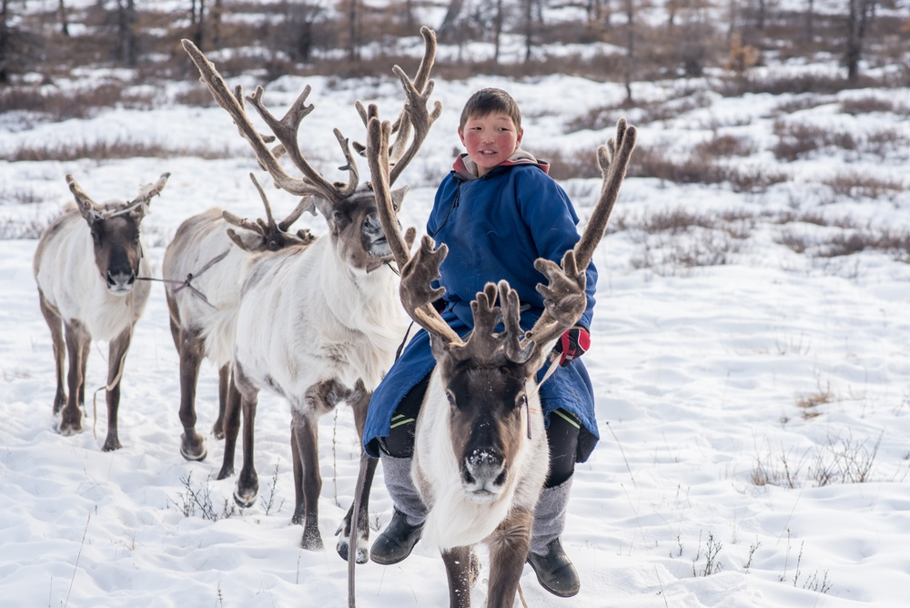 young mongolian kid riding deer through the snow