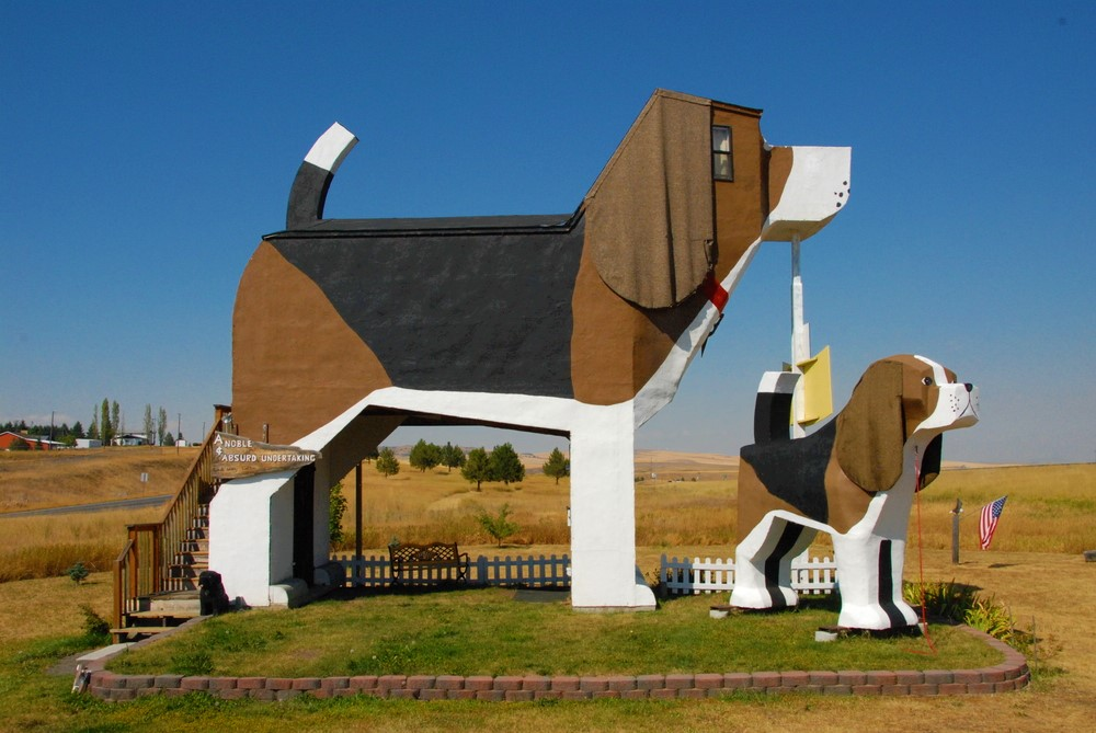 dog shaped house Airbnb in cottonwood USA