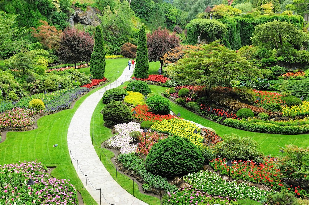beautiful colorful gardens in Victoria Canada