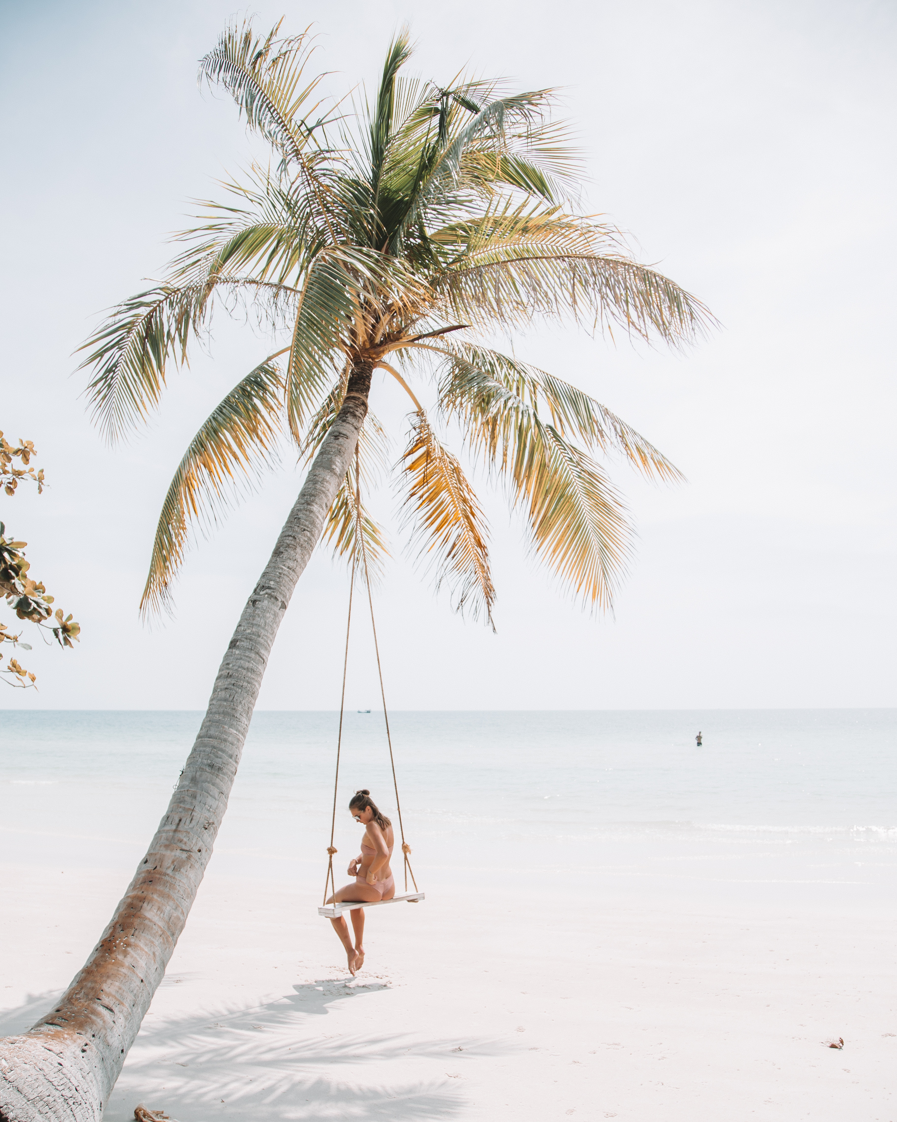 palm tree in vietnam on beautiful beach with girl on a swing set