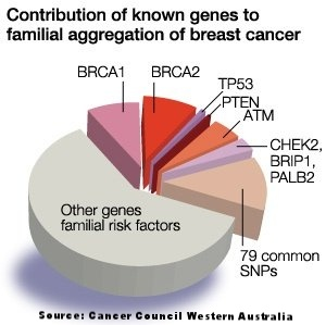 Do We Now Start Testing Patients Who Have Familial Bc But Not Brca 1 Or 2