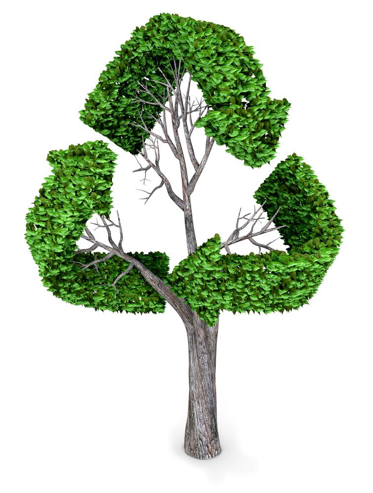 recyclestock