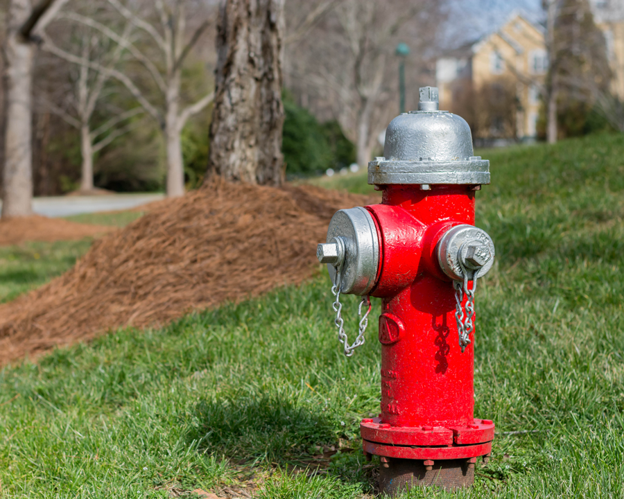 hydrant-spring.png