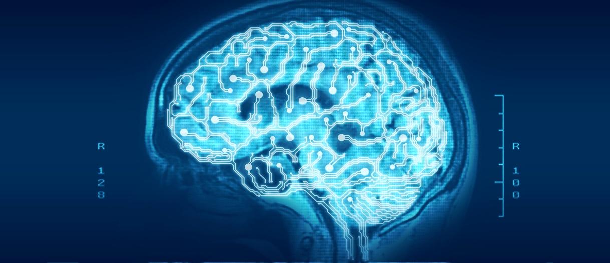 Abstract: Digital Brain