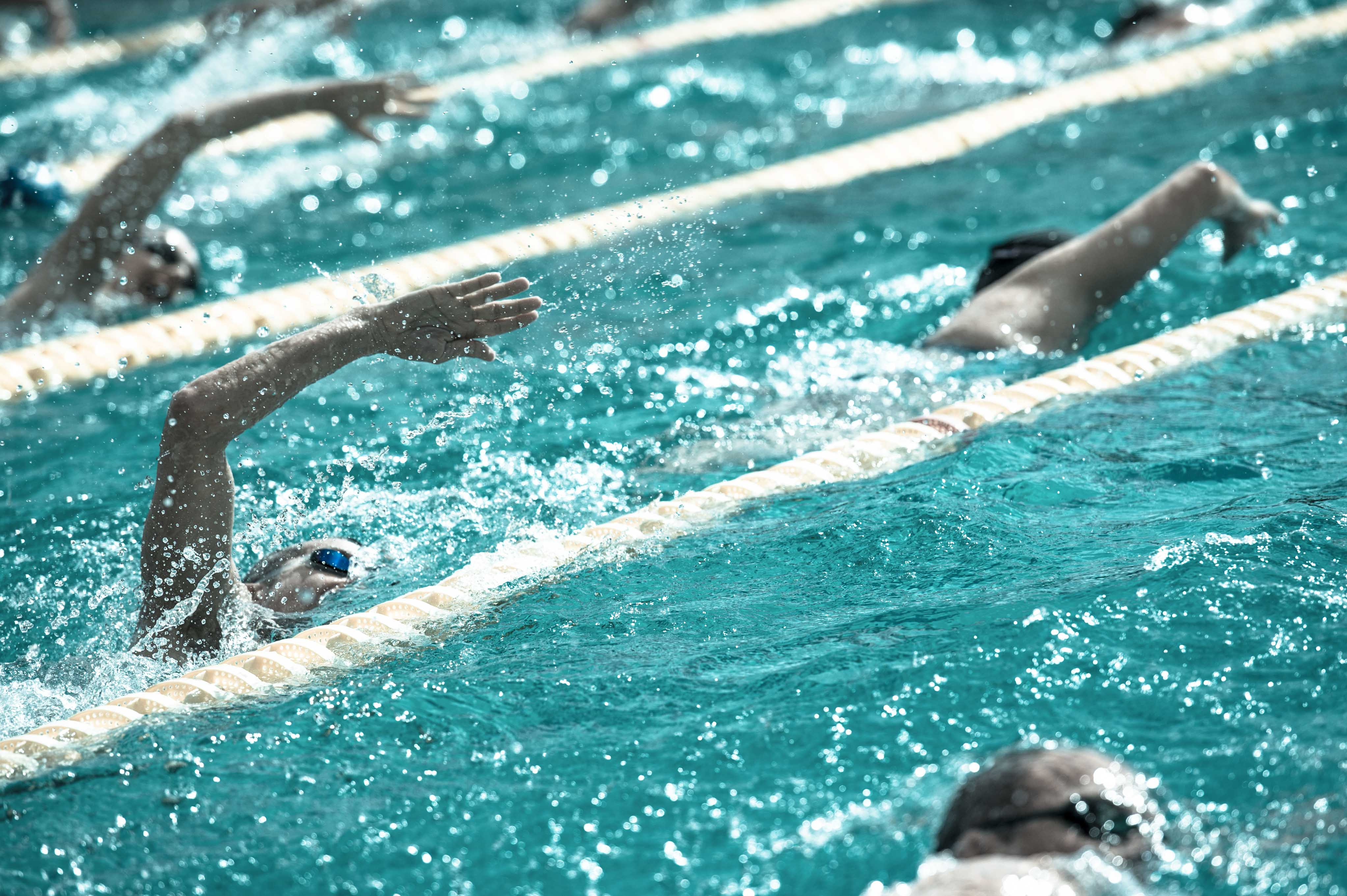 strength training for swimmers pdf