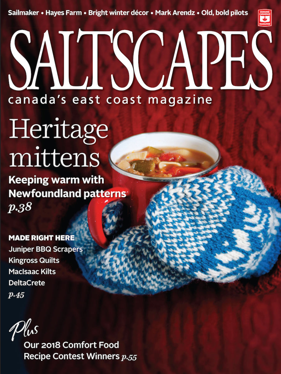 Saltscapes Cover