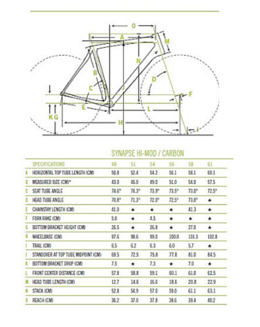 CANNONDALE Synapse - Size Chart