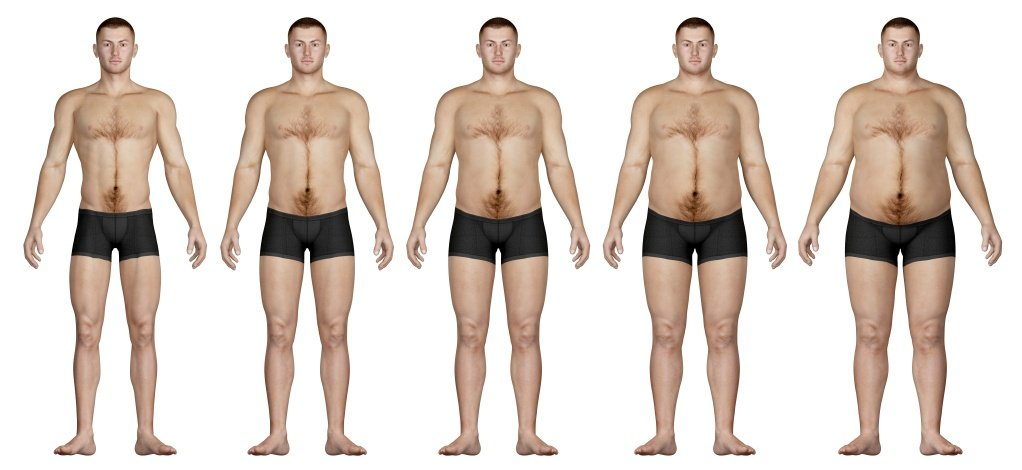 Alcohol And Body Fat 81