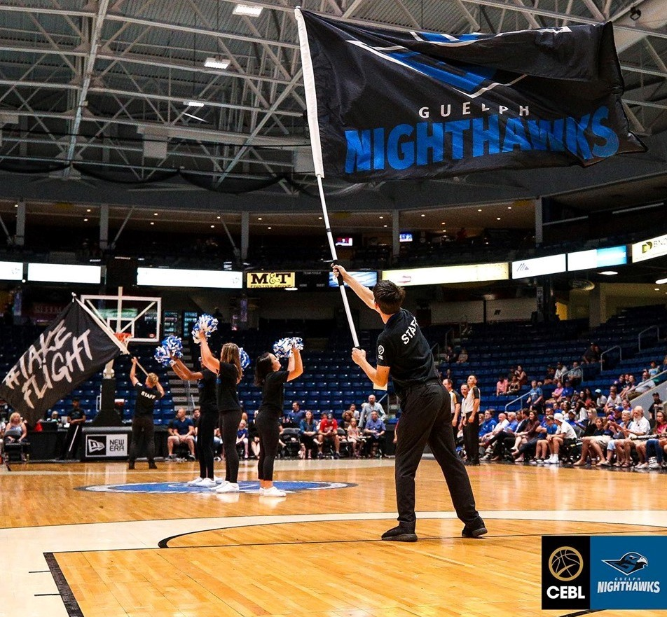 Nighthawks Flags