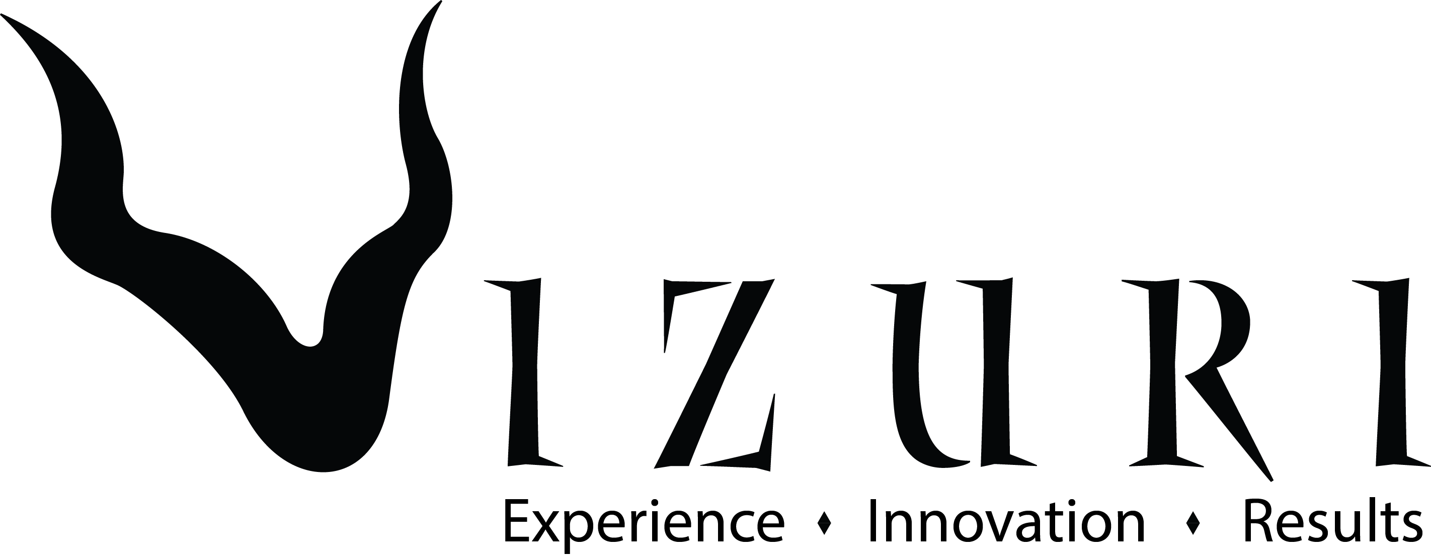 logo: Vizuri