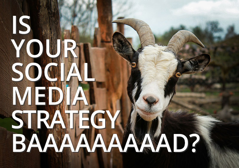 is your social media marketing strategy bad? Ashville, SC