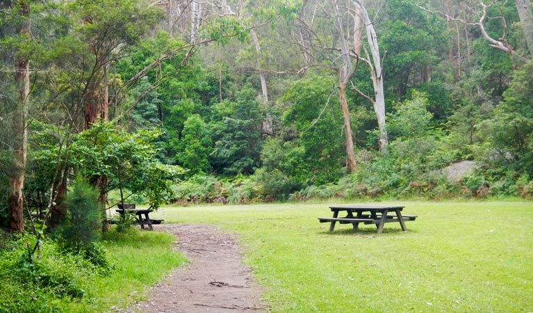 picnic_areas_2
