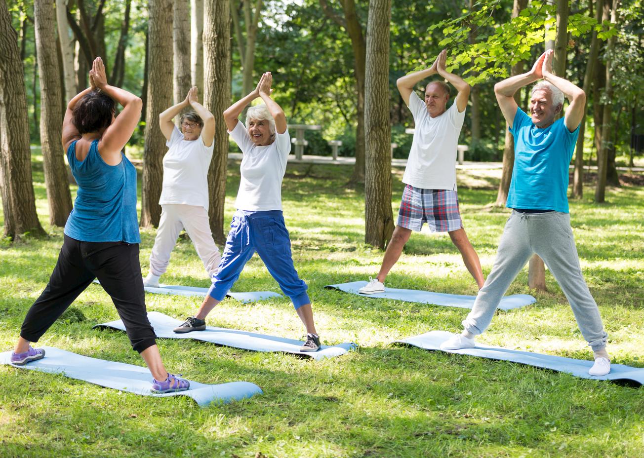 Envejecimiento activo saludable