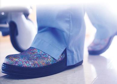 Login Shoe