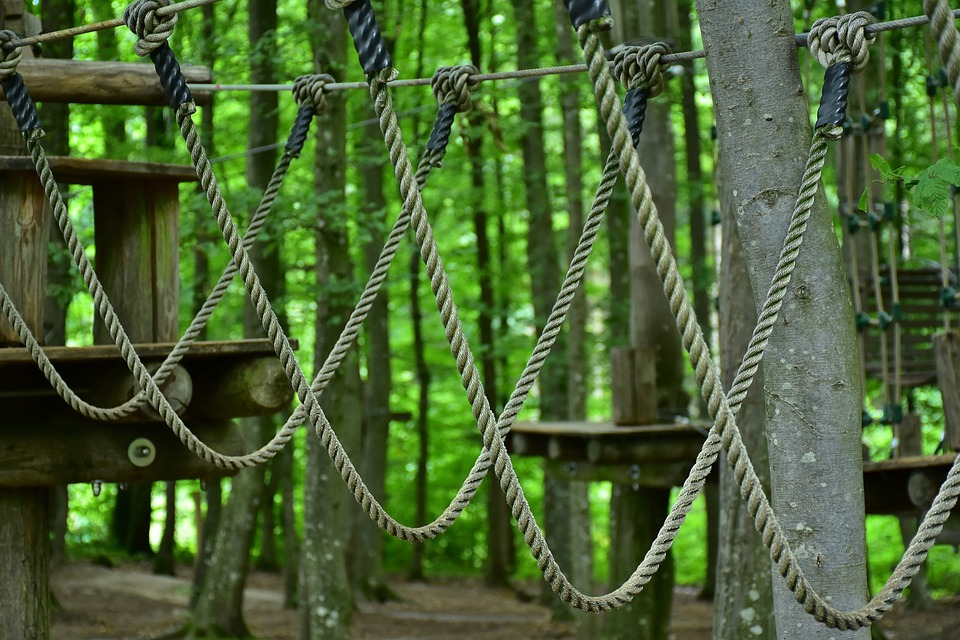 5-awesome-rope-courses-for-team-building-around-vancouver-bc-1