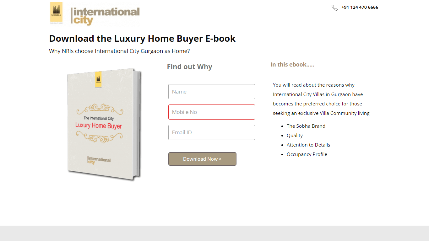 Download the Luxury Home Buyer E-Book