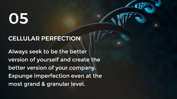 Gravity Investment's core value of cellular perfection.