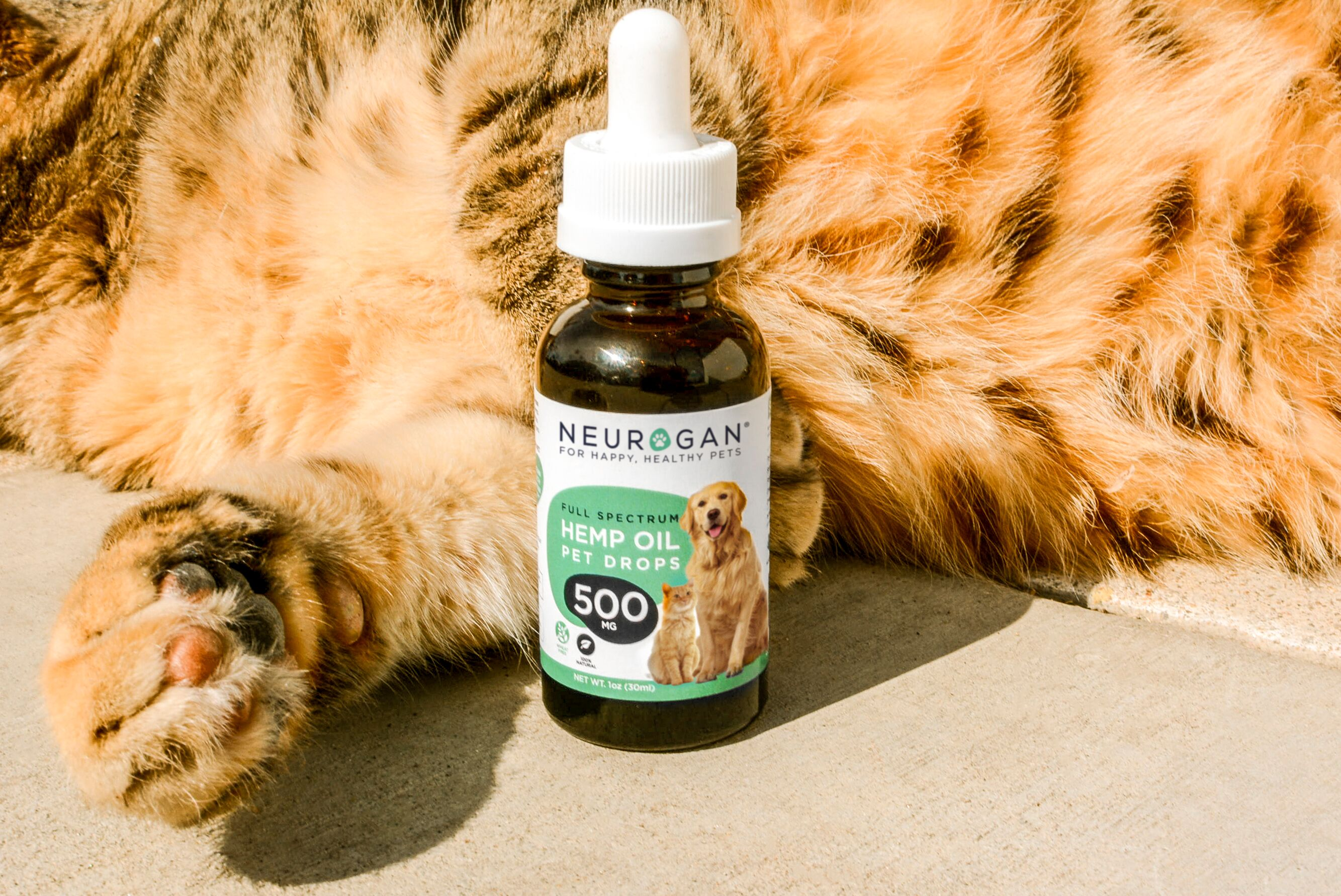 neurogan pet oil for cats
