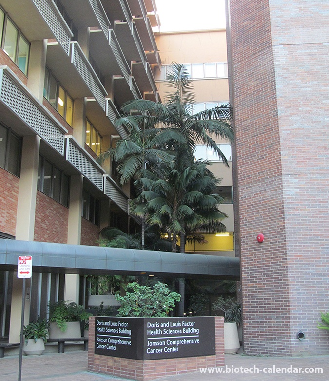 University of California, Los Angeles, Spring: Photo Gallery