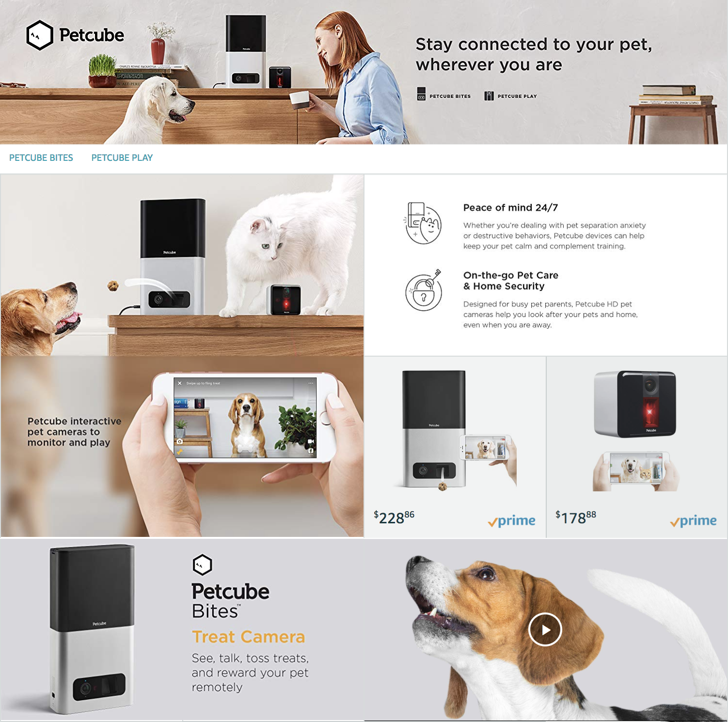 Petcube Amazon Store