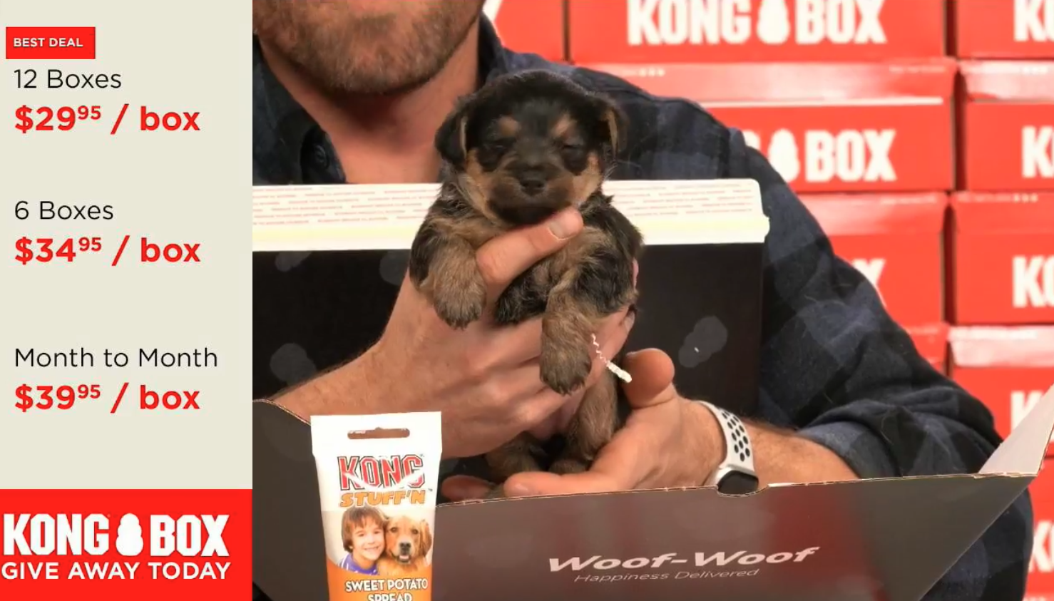 Facebook Live events are a great way to drive engagement to your ecommerce brand and product. Pattern's digital marketing experts brought in live puppies to help drive engagement for KONG Box.