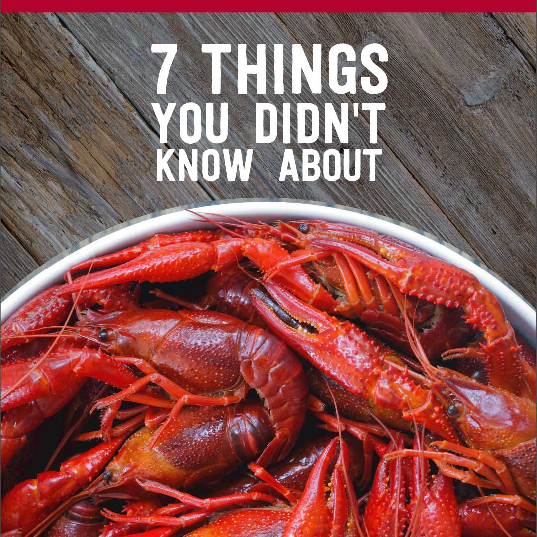 7 things you didnt know about crawfish