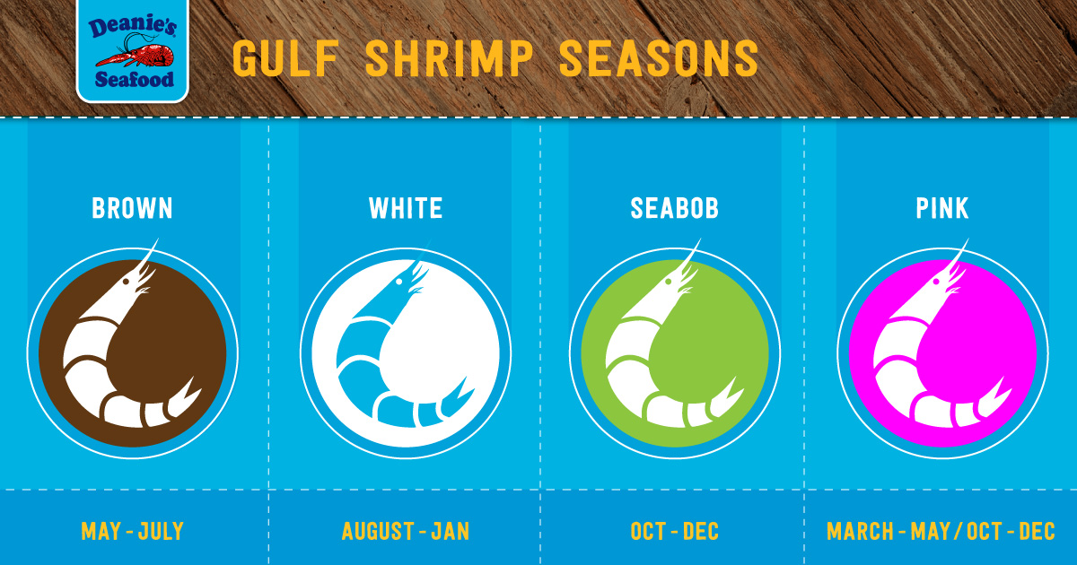 Gulf-Shrimp-Seasons