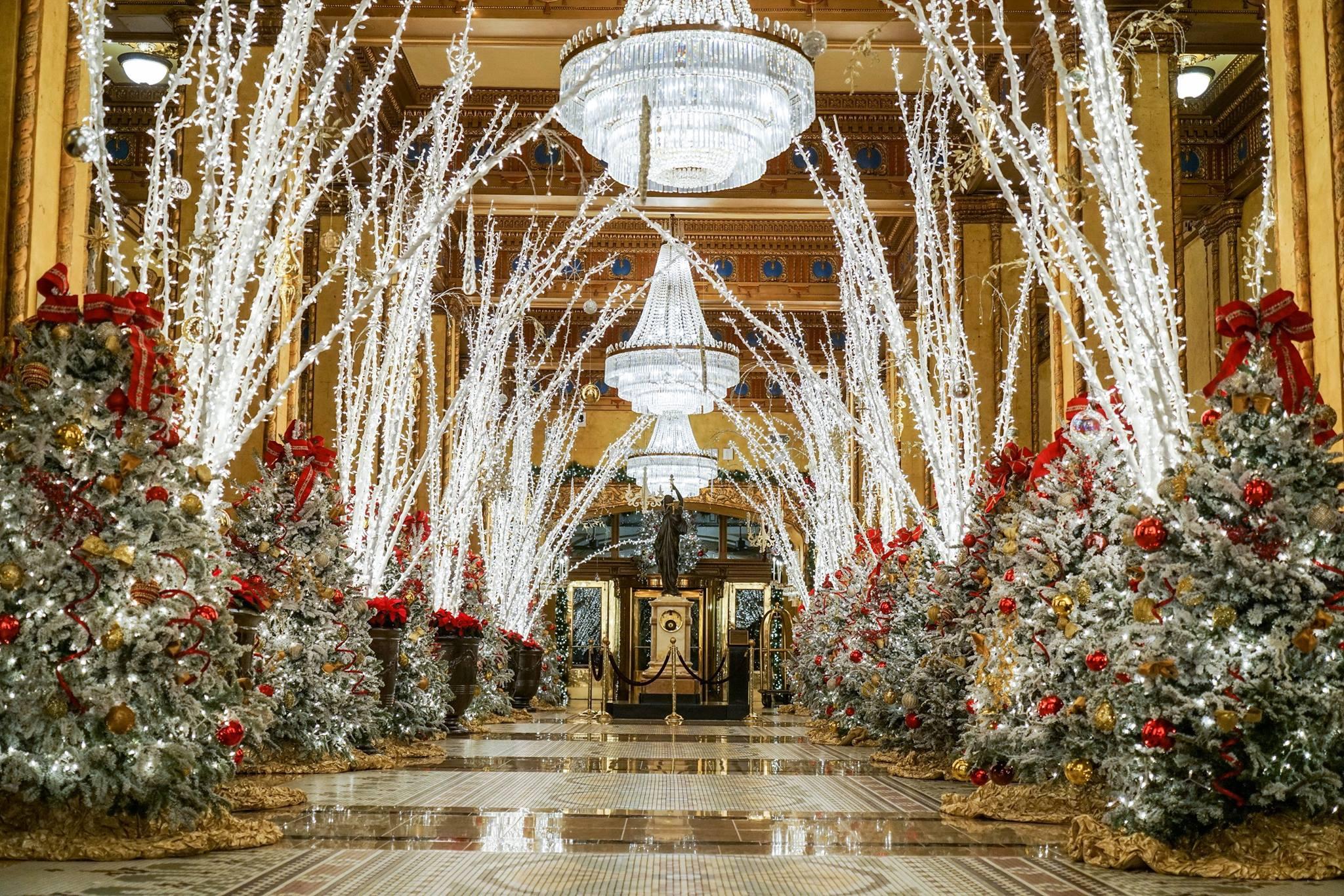 Αποτέλεσμα εικόνας για the roosevelt new orleans christmas