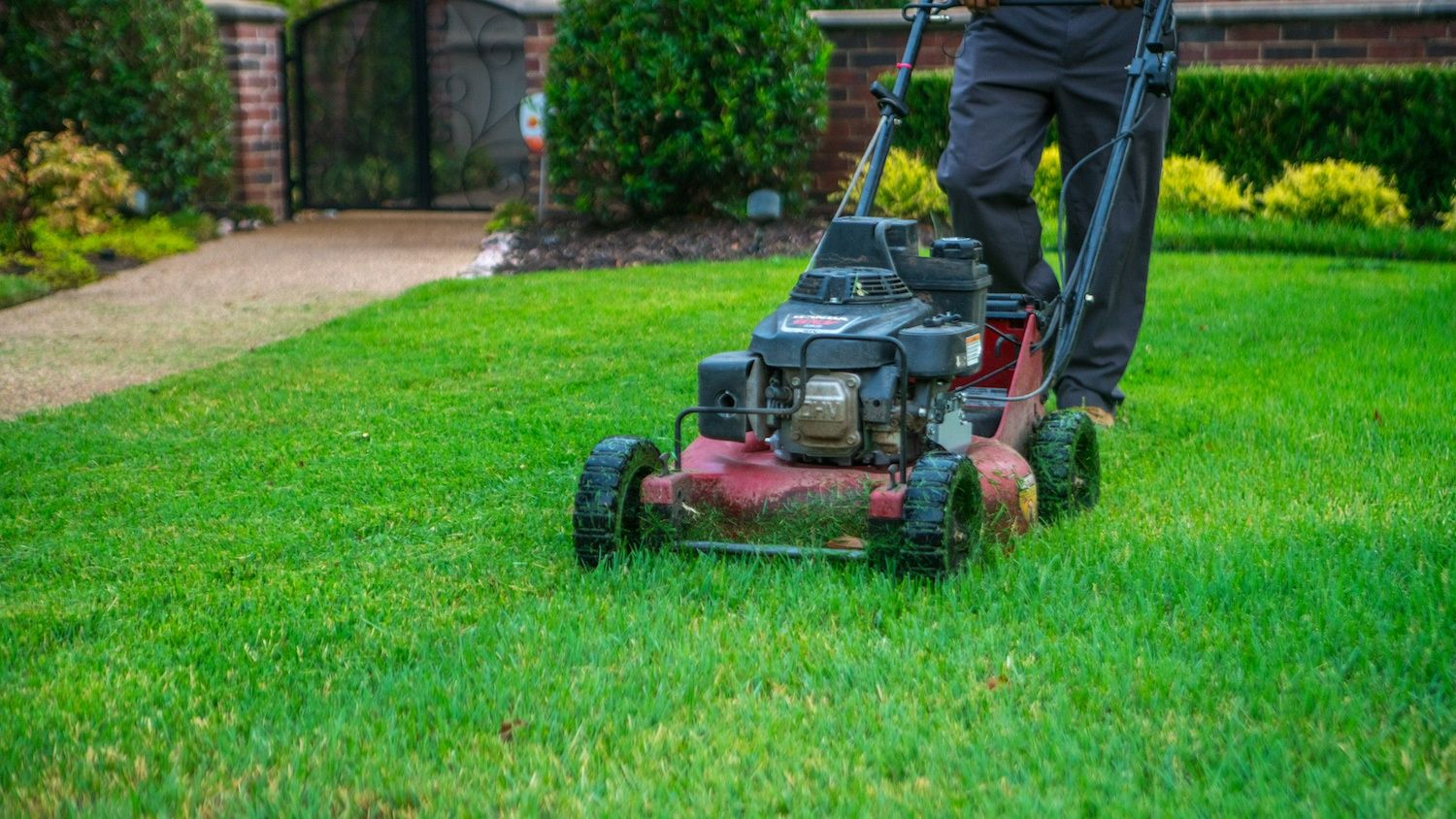 Lawn Care Tips for Texas Homeowners