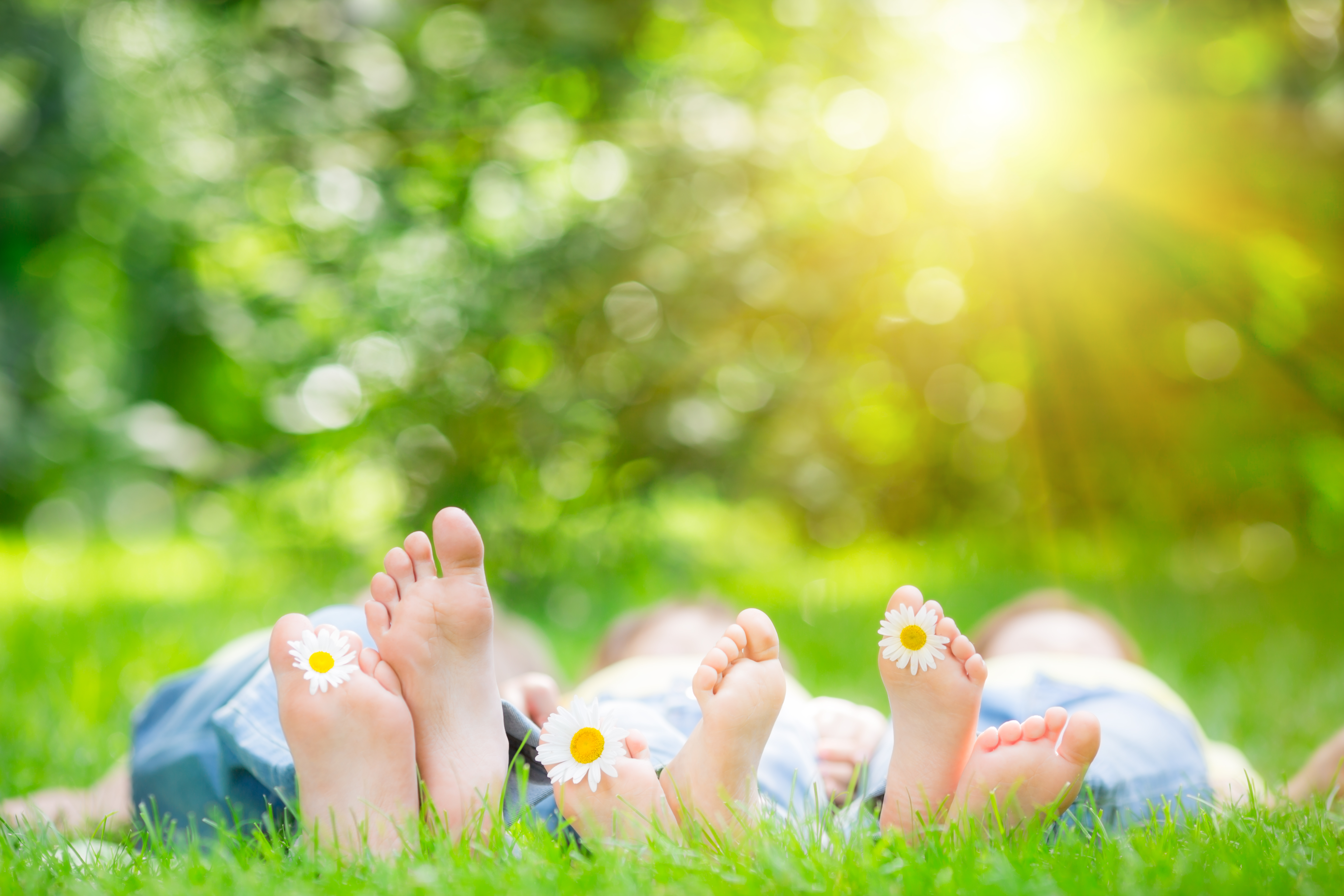 Canva - Family lying on grass