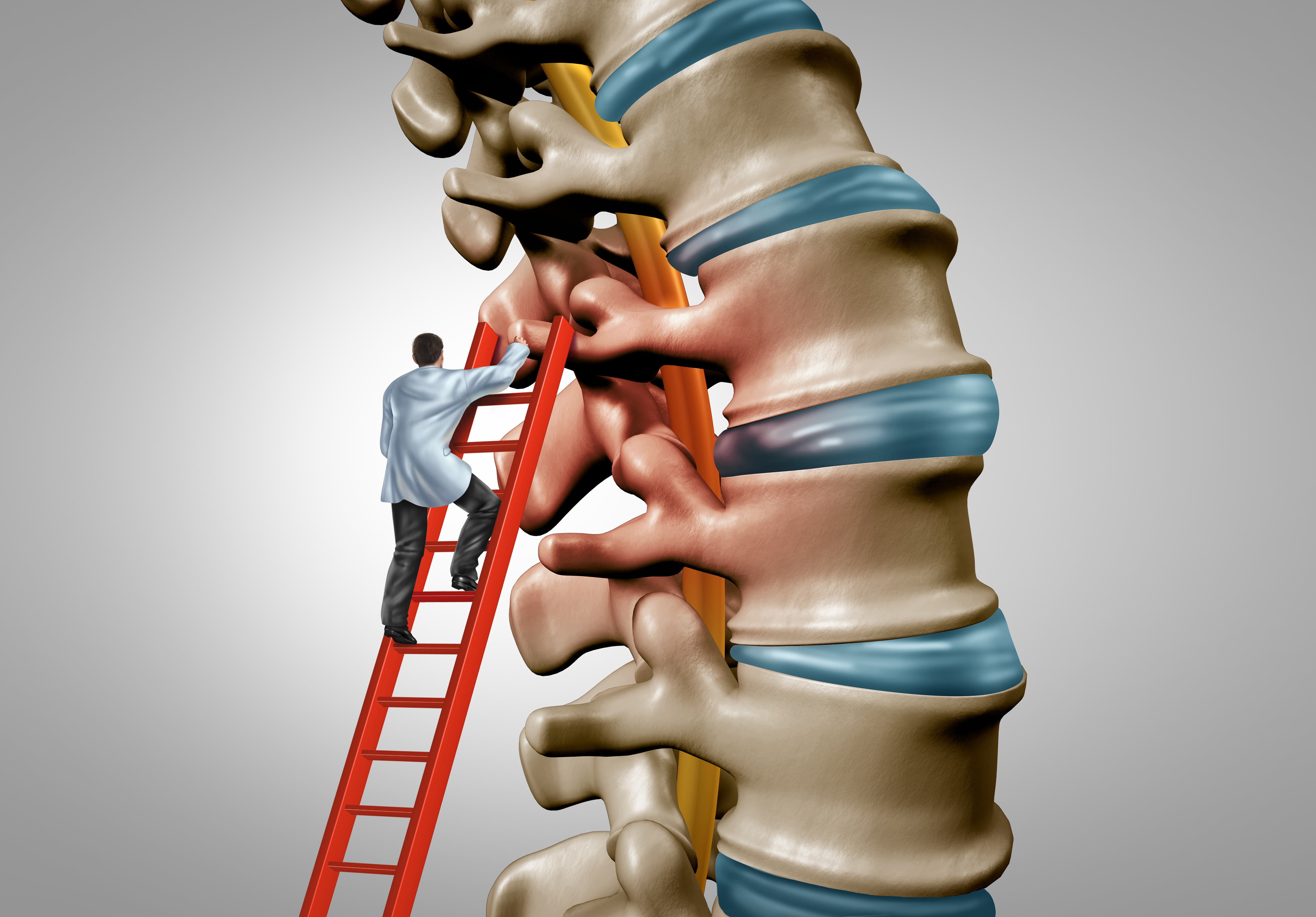 Canva - Spine Therapy