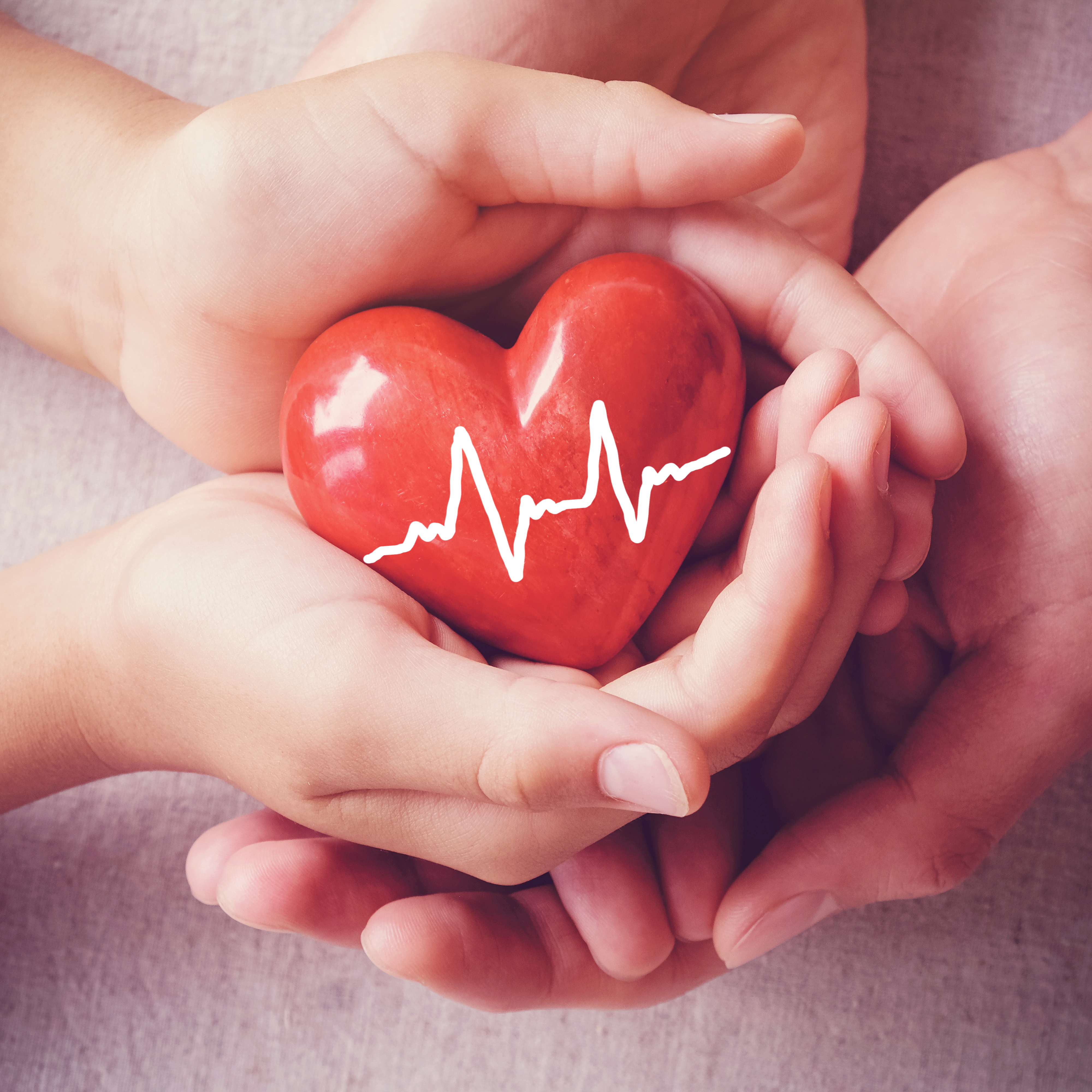 Canva - adult and child hands holiding red heart, adult and child hands holiding red heart, health care, organ donation, family insurance concept (1)