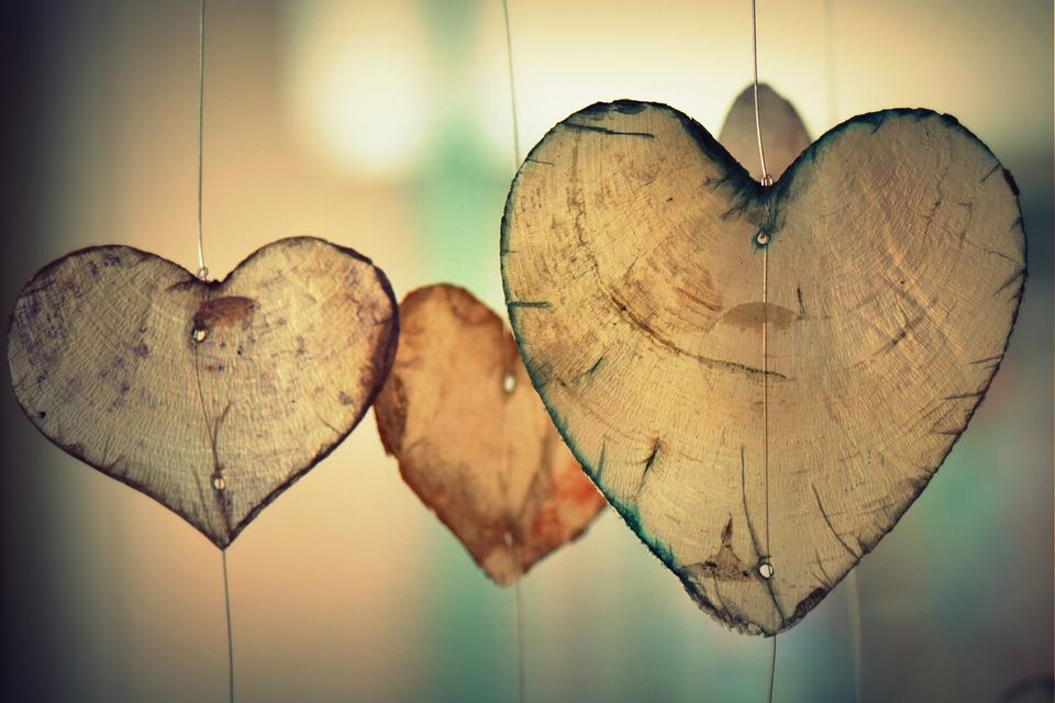 Give Love, Gather Love