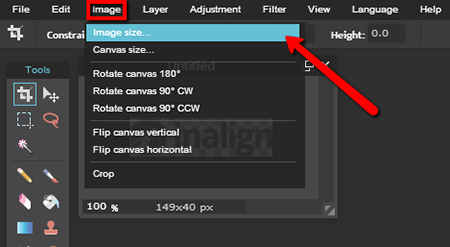 "select ""image size"" from the ""image"" menu"