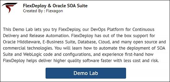 Oracle Cloud - Flexagon