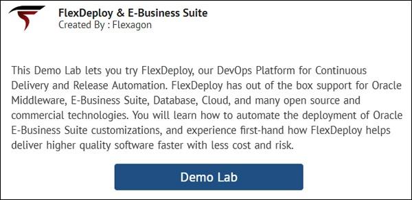 Oracle E-Business Suite - Flexagon