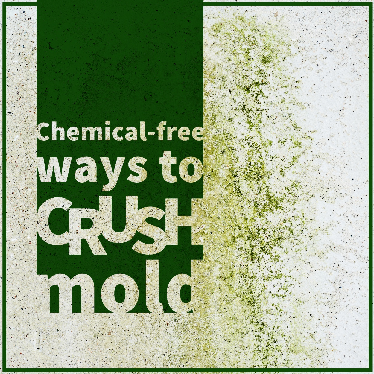 Crush_mold-01