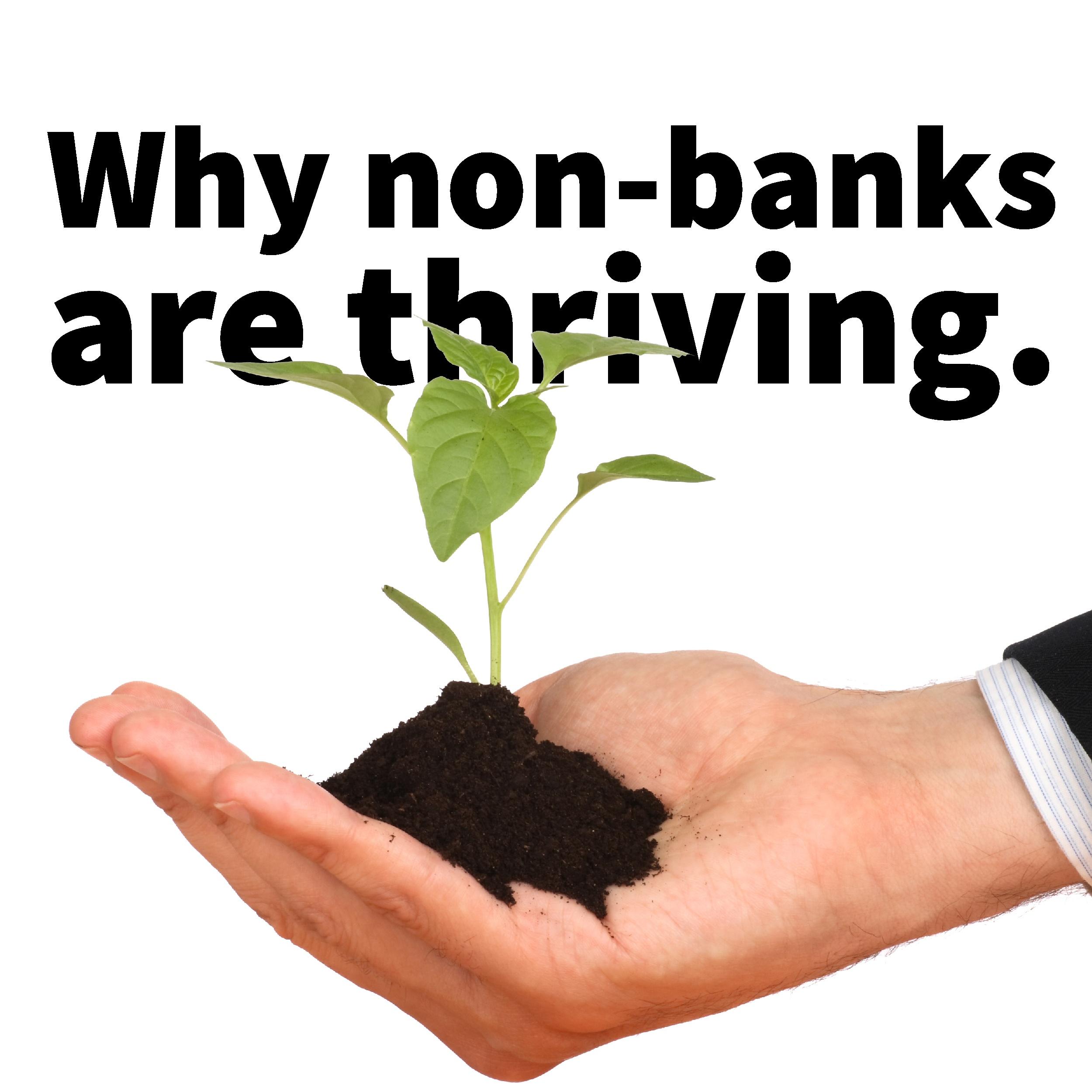 non-banks-01