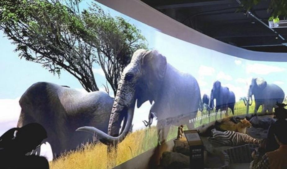 China VR zoo 1.jpg